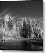 Semiahmoo River Metal Print