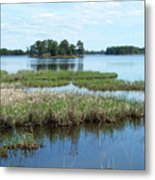 Seney Metal Print