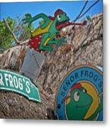 Senor Frog's - Playa Del Carmen Metal Print
