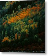 Sentinels Of September Serenity Metal Print