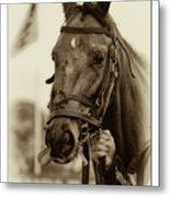 Sephia Racehorse Metal Print
