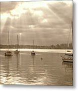 Sepia And Sunbeams Metal Print