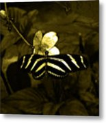 Sepia Butterfly And Flower Metal Print