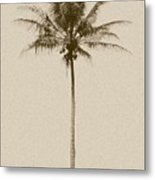 Sepia Palm I Metal Print
