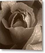 Sepia Rose Metal Print
