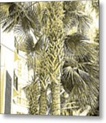 Sepia Toned Pen And Ink Palm Trees Metal Print