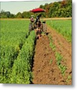 September 20-2016 Plowing Match  Metal Print
