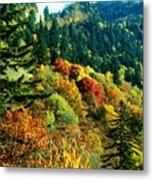 September Mountainside Metal Print