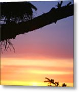 Sequim Sunset Ss 2007 Metal Print
