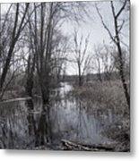 Serene Swampy River Metal Print
