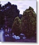 Serene Visitation Metal Print by Don Youngclaus