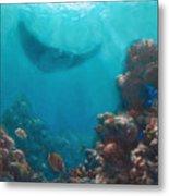Serenity - Hawaiian Underwater Reef And Manta Ray Metal Print