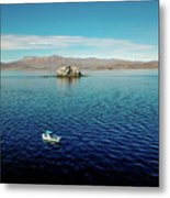 Serenity In The Sea Of Cortez  Metal Print