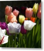 Seriously Colourful Metal Print