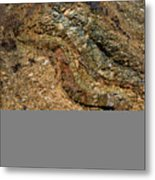 Serpentine Metal Print by Fred Lassmann