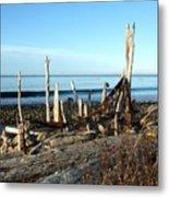 Seth's Seaside Driftwood Sculpture  Metal Print