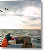 Setting Lobster Traps In Chatham On Cape Cod Metal Print