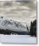 Settled Chill Metal Print