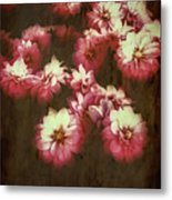 Shabby Chic Floral Design Metal Print