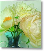Beautiful Peony Flowers  In Blue Vase. Metal Print