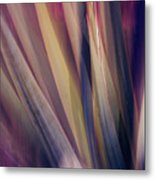 Shade Of Color Metal Print
