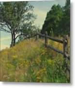 Shade Tree Metal Print