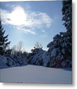 Shades Of Blue In Winter Metal Print