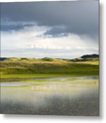 Shades Of Yelliow Metal Print