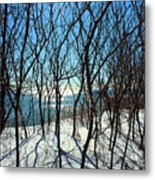 Shadow Branches Metal Print