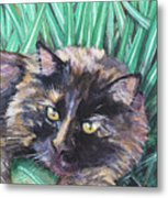 Shadow In The Grass Metal Print