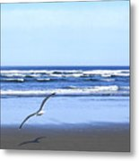 Shadow On The Sand Metal Print