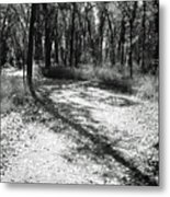 Shadow Path Metal Print