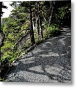 Shadow Path Metal Print