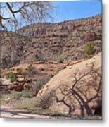 Shadow Tree Dominguez-escalante Canyon Colorado Metal Print