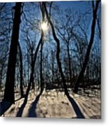 Shadows And Silhouettes Metal Print