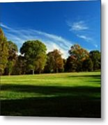 Shadows And Trees Of The Afternoon - Monmouth Battlefield Park Metal Print