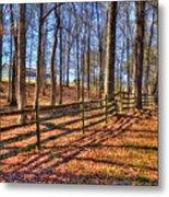 Shadows In Autumn Metal Print
