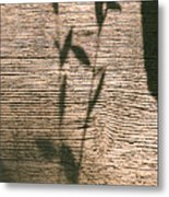 Shadows Of Life Metal Print