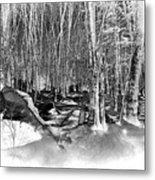 Shadows Of Winter Metal Print