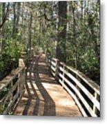 Shadows On A Boardwalk Through The Swamp Metal Print
