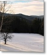 Shadows On A Snow Covered Field Metal Print