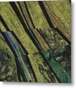 Shadows on the Lawn Metal Print