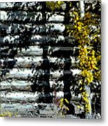 Shadows On The Past Posterized Metal Print