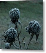 Shadowy Frozen Pods From The Darkside Metal Print