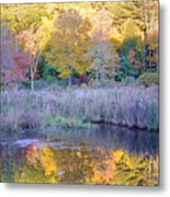 Shady Pond Metal Print