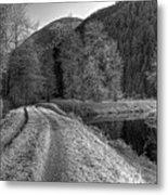 Shady Trail Tonemapped Metal Print