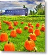 Shaker Pumpkin Harvest Metal Print