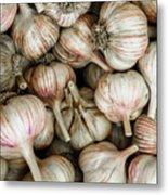 Shantung Garlic Metal Print