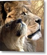 Sharing The Vision Metal Print by Bill Stephens