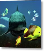 Shark And Fishes Metal Print